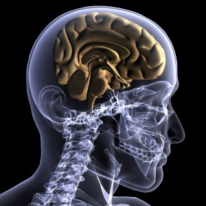 Upper cervical chiropractic care